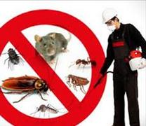 شركه العنايه المتميزة لمكافحة الحشرات