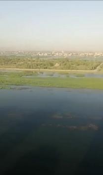 شقه للبيع 170 م بامتداد شارع الجمهوريه بسوهاج...