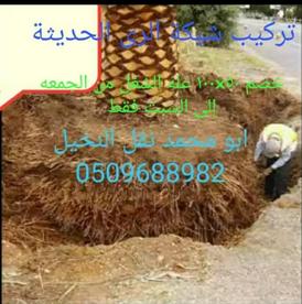 Logging services 12
