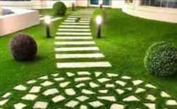 تنسيق وتجميل الحدائق
