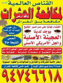 Anti Bugs Kuwait3