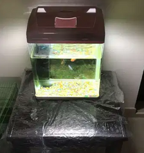 Aquarium +table