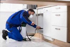 Asma pest control services