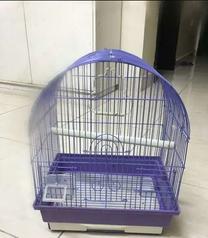 Bird cage urgent sale