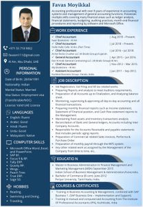 Accountant is searching for a job