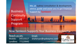 Suppport your business by sydney consultation