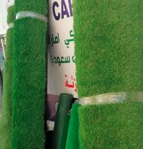 Grass for garden