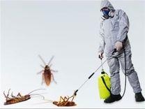 Gulf line pest control services