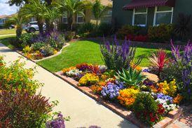 Indoor outdoor plants, grass, pots for landscaping or gardening
