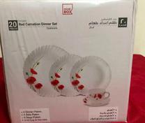 Ivory Red Carnation Dinner Set