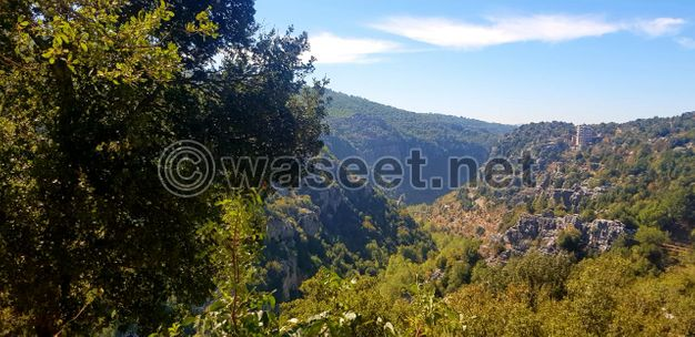 Land for Sale in a Prime Location of Mayrouba