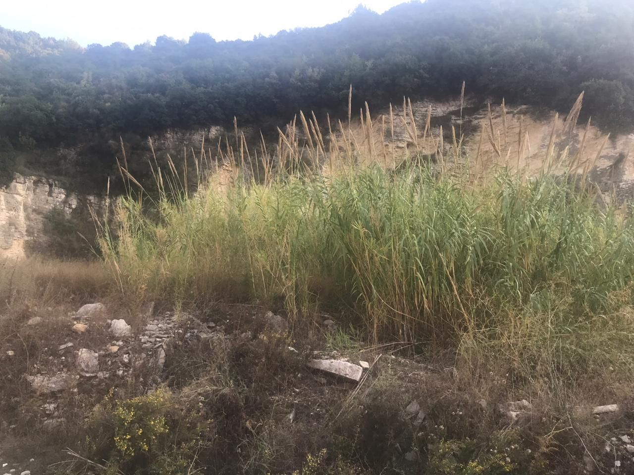 Land for Sale in Halat with Open Mountain View