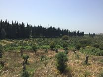 LANDS FOR SALE AT KAFR DBYAN 1078 m
