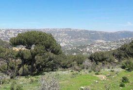 Land for Sale in Dahr El Sawan