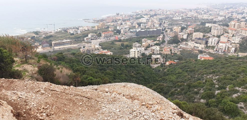 Land for Sale in the Town of Kfar Aabida