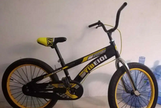 Mountain bike size 20