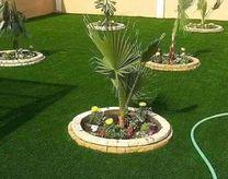 Nurseries and gardens