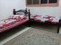 sharing house for rent