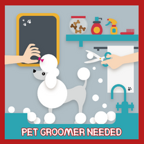 Looking for a pet groomer