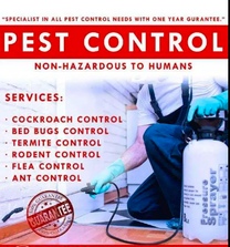Pest Control Services and Cleaning Services