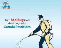 Pest control services رش مبیت مکافحتہ الحشرت
