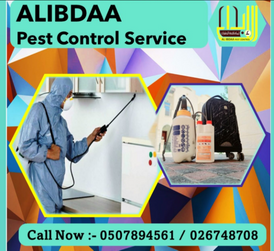 Pest control services in Abu Dhabi and Al Ain