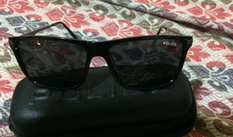 Police Sunglasses Referor