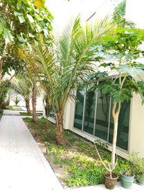 #SAAR مودرن 3 غرف نوم فيلا نصف مفروشة #بحرين:800 #INCLUSIVE ...