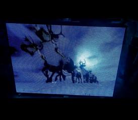Screen video p8 128x90 double