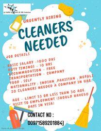 Cleaner's Job