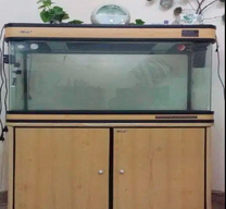 Used Aquarium Fish Tank