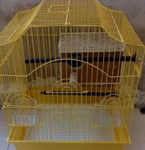 Yellow colour cage with egg box
