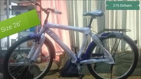 basic  bicycle