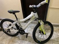 brand new bicycle 100%