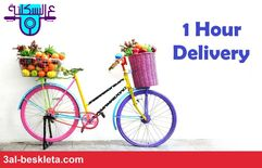 grocery home delivery0