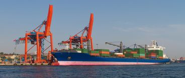 Arabia Cargo for international shipping And Customs clearance3