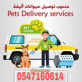 A delivery representative for pets