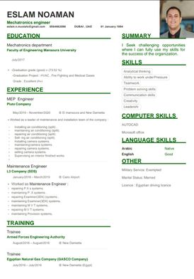mechatronics Engineer looking for a job