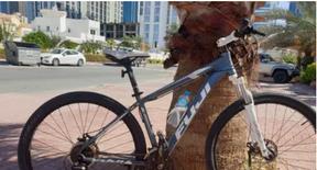 mountain bike 29 Large size