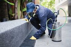 pest control & Disinfect services
