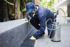 خدمات مكافحة وتطهير الحشرات
