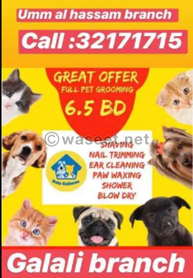 pets cabana grooming offer