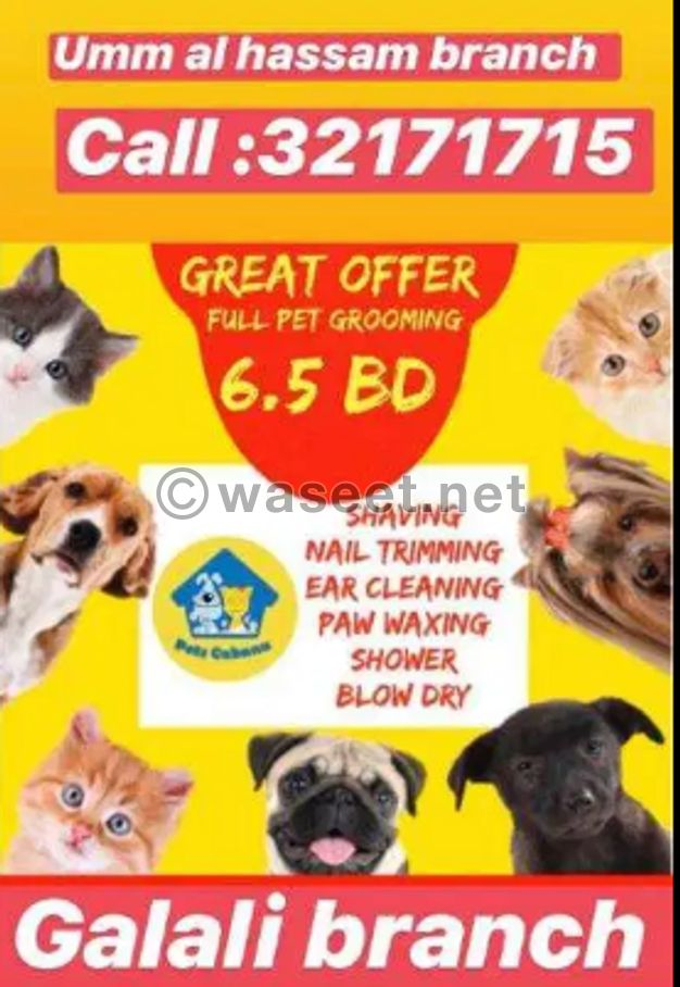 pets cabana )grooming offer