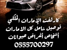 Representative and Carleft Comprehensive Delivery All UAE
