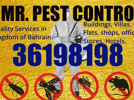 Mr Pest control Services With Guarantee