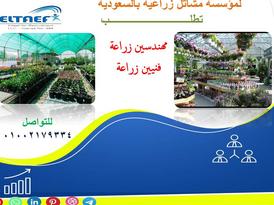 مطلوب مهندسين زراعة وفنيين زراعة مشاتل للسعودية