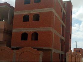 منزل لقطه ببرج العرب الجديده