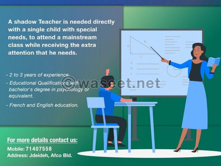 Shadow Teacher 0