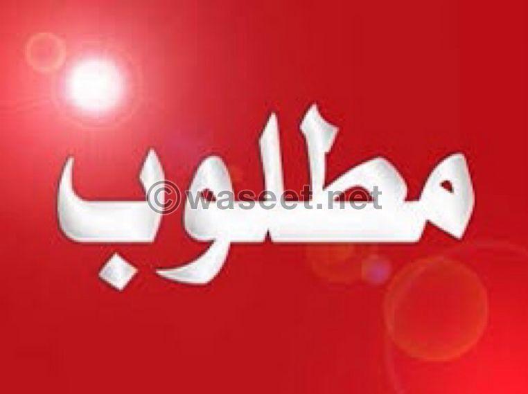 مطلوب شقة للايجار في بيروت 0