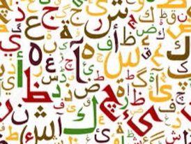 Arabic teacher 0